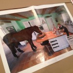 Humor. A horse in a kitchen? Enough said.