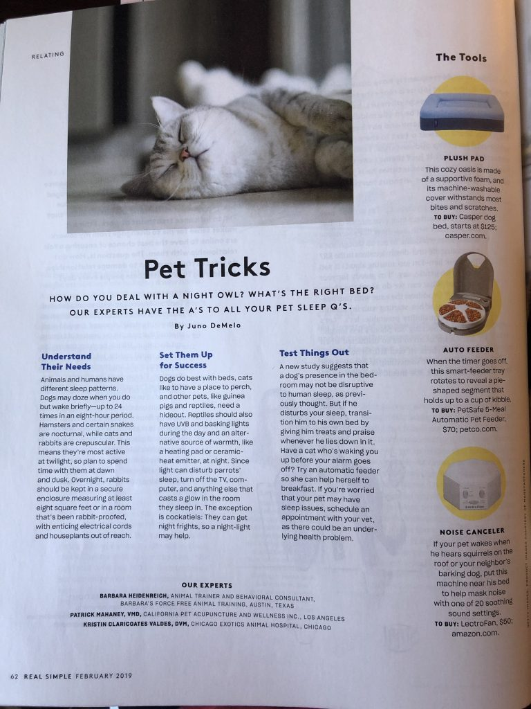 Circle shape images in Real Simple magazine.