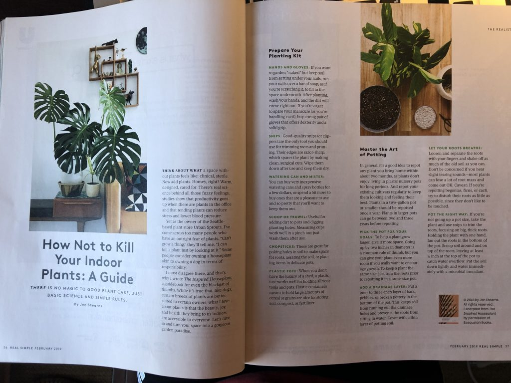 Rectangle shaped images in Real Simple magazine.